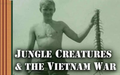 🐅 Vietnam Vets Talk about the Creatures They Encountered in the Jungle While Riding on Tanks