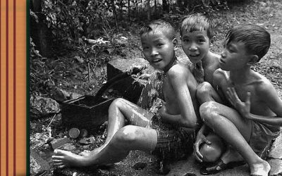 Children of the Vietnam War, Where are they Now?